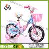 Bicicleta das crianças da bicicleta das crianças da bicicleta dos miúdos