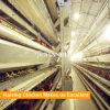 Автоматический тип оборудование h птицефермы цыпленка для слоя