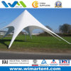 10X10m White Aluminum Star Camping Tent
