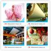 Papel revestido ligero superior para el regalo Pakcaging&Magazines