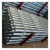 Гальванизированные Q235 стальные Multidirectional леса Layher Ringlock розетки Q345