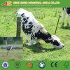 Стренга предохранения от скотоводческого хозяйства одиночная 4 пункта колючей проволоки колючки