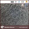 중국 Seawave 백색 살포 백색 화강암