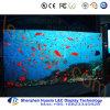 Farbenreicher LED-Bildschirm