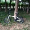 Китай складывая Bike Rseb-103 e