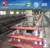 Système automatique de ramassage d'oeufs pour la ferme de poulet (YX-EC)