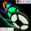 높은 루멘 SMD 3528 유연한 LED 지구 빛