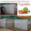 野菜を保存するプレハブの冷蔵室
