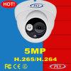 La vision nocturne H. 265 5MP imperméabilisent l'appareil-photo de réseau d'IP de dôme