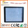 Lo spettro completo 600W LED coltiva gli indicatori luminosi per le piante mediche