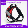 Ropa de la fábrica para el harness de la ropa del perro del producto del animal doméstico de los perros