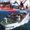 Logística internacional de China, logística profissional a no mundo inteiro