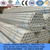Q235 Galvanized Pipe en Tube voor Water of Greenhouse