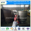 La presidenza capa ellittica del acciaio al carbonio copre le protezioni di estremità