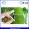 Timber Management를 위한 Tk4100 Chip Nail RFID Metal Tags