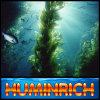 Fertilizante da alga do fertilizante da árvore de fruta da aplicação de Huminrich Quick&Easy