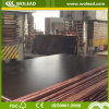 12mmprofessional Concrete Formwork Film Faced Plywood (w15117)
