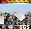 GB/JIS Steel Round Bars 18mm di Hot Rolle