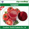 Порошок ликопина выдержки томата 100% естественный