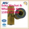 Pièces d'auto de filtre à huile de Hengst pour le camion utilisé dans l'homme (51.055.040.107)