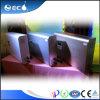 CE RoHS Water Filter System per la piscina di Public (OLKC01)