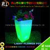 Pots de fleur allumés par DEL lumineux par lueur de planteur