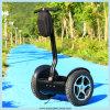 Carro eléctrico al aire libre de dos ruedas