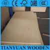 Contre-plaqué de bouleau de noyau de bois dur pour les meubles et la décoration