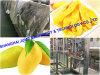 Leistungsstarkes Mangofrucht-Püree-aufbereitende Zeile
