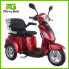 motorino elettrico acido al piombo di 48V/20ah Trike/motorino del motociclo