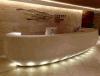 공상 작풍 인공적인 대리석 상업적인 수신 카운터 디자인