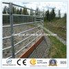Geschweißter Pferden-Vieh-Zaun, geschweißtes Zaun-Panel