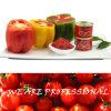 Pasta de tomate dobro do concentrado para Dubai Co Ltd da indústria do tomate de Hebei