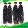 Отсутствие химиката отсутствие линяя волос волны Kanekalon глубоких