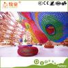 Scalata dell'albero del Rainbow del playhouse dei bambini