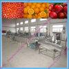 Machine de nettoyeur de rondelle de fruit d'économie de l'eau