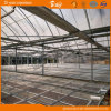 F-Clean Film Roof를 가진 긴 생활 Span Glass Wall Greenhouse