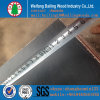 12/18 milímetro Film Faced Plywood /Shuttering Plywood