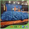 Sécurité Large Indoor Trampoline Park avec Foam Pit
