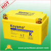 Erstklassiges Motorcycle Battery 8.6ah 12V
