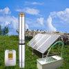 태양 우물 펌프 시스템