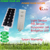 30W todo en una luz de calle solar de Integerated LED con el Ce RoHS IP65