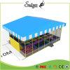 De openlucht Trampoline van de Gymnastiek van de Trampoline van de Dekking van het Dak Ritmische voor Volwassene en Jonge geitjes