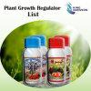 Quenson 임금 농작물 보호 제품 명부 식물 성장 호르몬