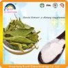 Выдержка листьев Stevia с гликозидами Steviol