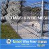 뉴질랜드와 호주 Market를 위한 사슬 Link Fence