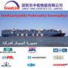 O frete de mar o mais barato de Shenzhen/Shanghai de China a Mogadishu de Somália