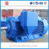 moteur à courant alternatif Électrique asynchrone triphasé de 150kw 50kv