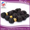 Освободите соткать человеческих волос Remy девственницы надкожицы волны бразильский (HLWB-A445)