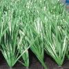 Ajardinando preços artificiais do relvado da grama sintética macia
